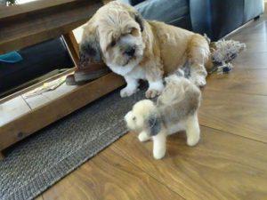 hondjes van Geartsje
